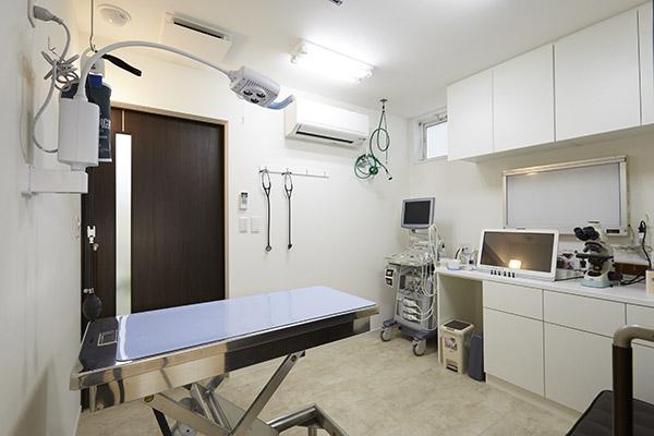 犬診察室1